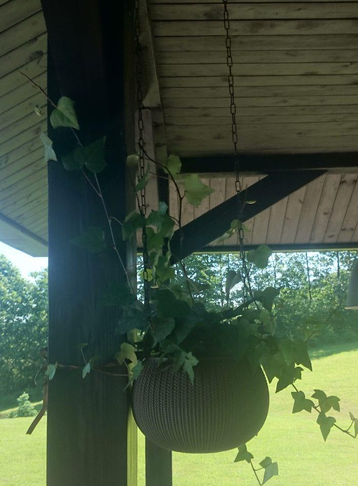 Doniczka na balkon do podwieszenia