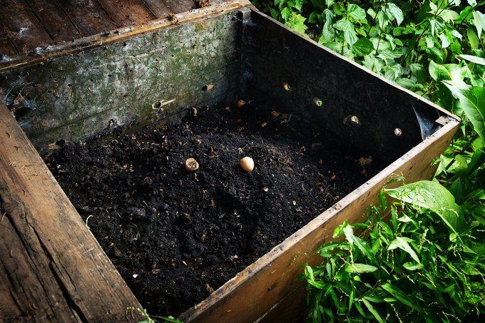 Przygotowanie gleby pod uprawe pomidorow