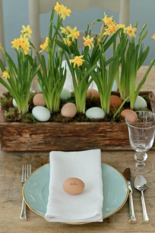 Żonkile i jajka
