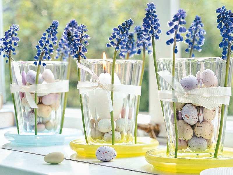 Przepiórcze jaja i niebieskie szafirki