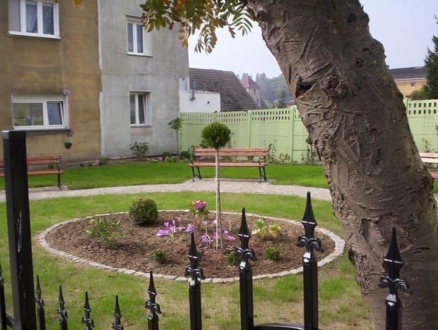 Ogród na początku października 2015.