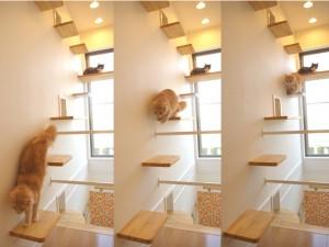 designerski domek dla kota