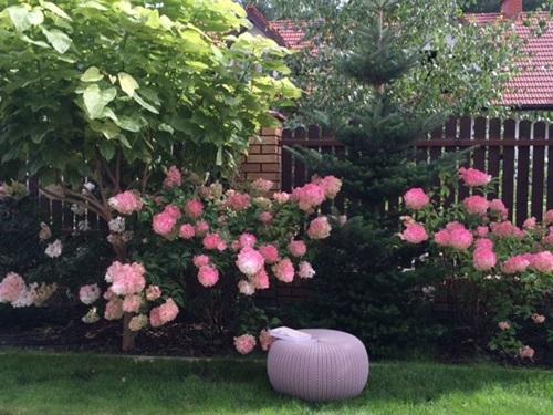 Funkcjonalny ogród przydomowy z pufą knit