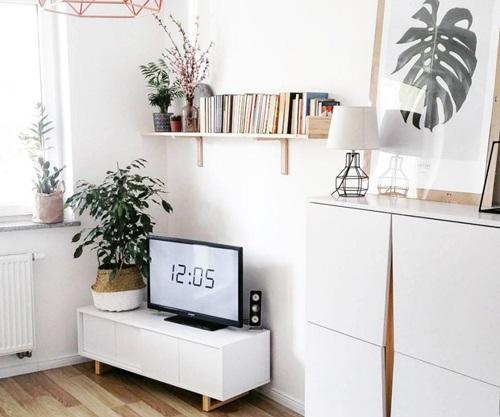 Półka na książki nad telewizorem w mieszkaniu urządzonym meblami Womeb