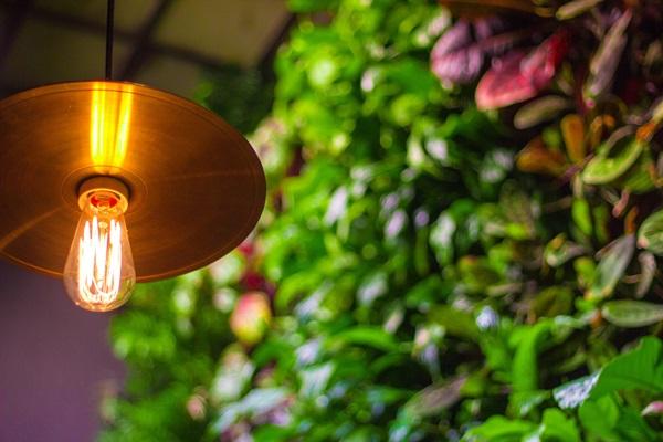 Lampy ogrodowe z czujnikiem ruchu