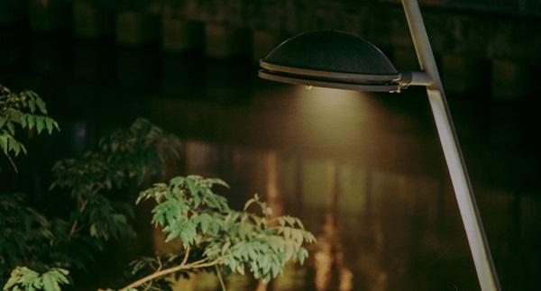 Oświetlenie ogrodowe z czujnikiem ruchu